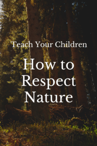 Teach Your Children How to Respect Nature